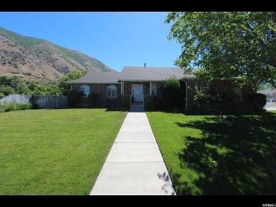 Springville Single Family Home For Sale: 145 S 1300 E