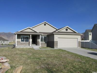 Tooele Single Family Home For Sale: 898 N Flint Cir W