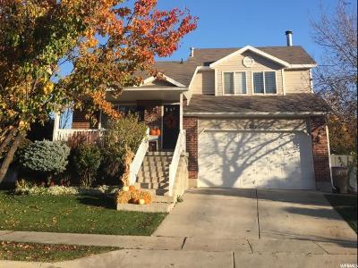 Draper Single Family Home For Sale: 272 W 13165 S