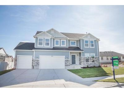 West Jordan Single Family Home For Sale: 6067 W 8520 S #730