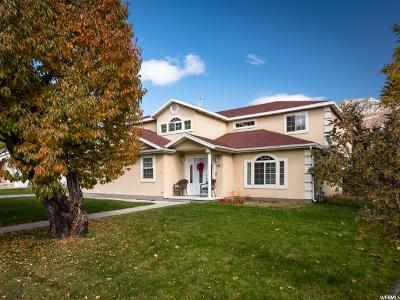 Provo Single Family Home For Sale: 3912 N 300 W