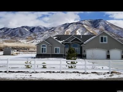 Erda Single Family Home For Sale: 4750 N Droubay Rd E
