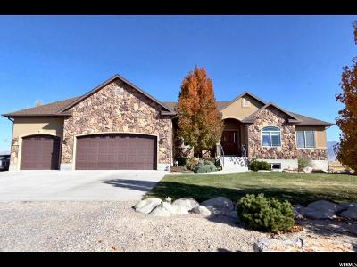 Tremonton Single Family Home For Sale: 1340 S 1000 W