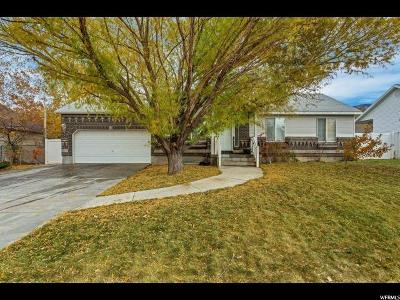 Tooele Single Family Home For Sale: 1222 N 490 E