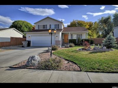 Springville Single Family Home For Sale: 377 W 550 N