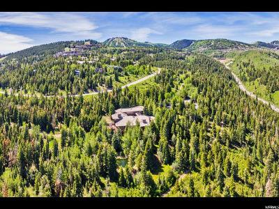 Park City Single Family Home For Sale: 5000 Royal St
