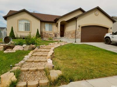 Grantsville Single Family Home For Sale: 139 Aspen Way