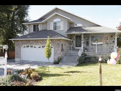 Orem Single Family Home For Sale: 1874 S Main St