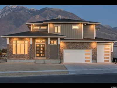 Draper Single Family Home For Sale: 13067 S Agnes Cv E #101