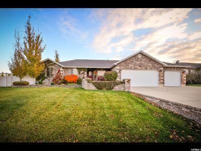 Riverton Single Family Home For Sale: 4013 Red Tail Dr