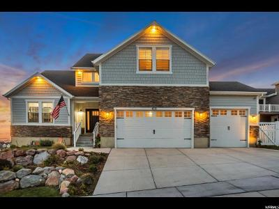 Lehi Single Family Home For Sale: 4211 N 400 W
