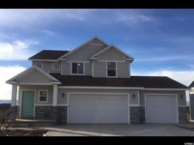 Smithfield Single Family Home For Sale: 531 S 1080 E #915