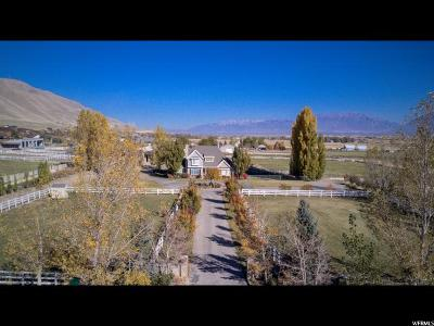 Payson Single Family Home For Sale: 10424 S 5850 W
