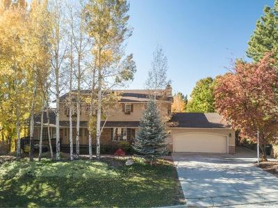 Provo Single Family Home For Sale: 4653 N Windsor Dr E