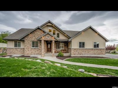 Springville Single Family Home For Sale: 1722 E 200 S