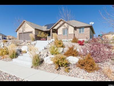 Tremonton Single Family Home For Sale: 3060 W 1100 N