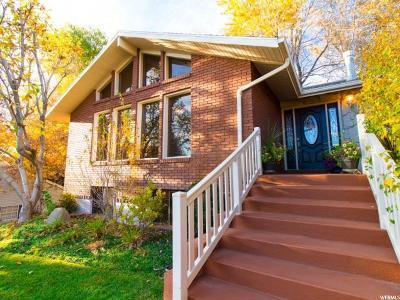 Orem Single Family Home For Sale: 571 N Meadowlark Rd E
