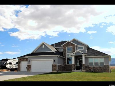 Wellsville Single Family Home For Sale: 106 W 1550 S