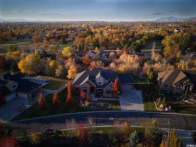 Kaysville Single Family Home For Sale: 571 Happy Hollow Ln