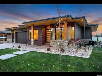 Draper Single Family Home For Sale: 1249 E Corner View Ct #1