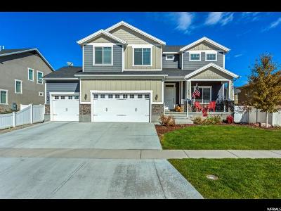 Stansbury Park Single Family Home For Sale: 702 W Tribeca Way S