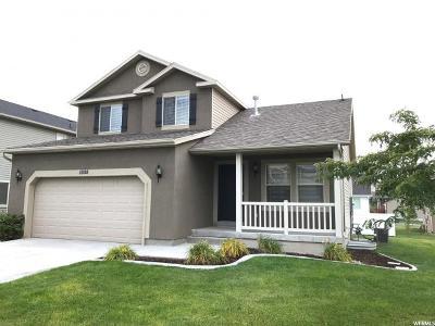 Eagle Mountain Single Family Home For Sale: 4588 E Evans Dr S