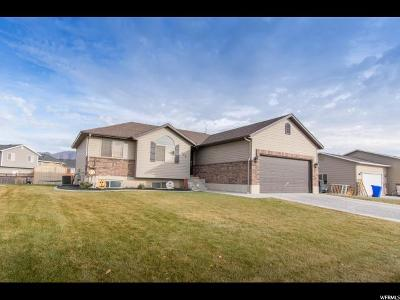Tremonton Single Family Home For Sale: 229 S 500 W