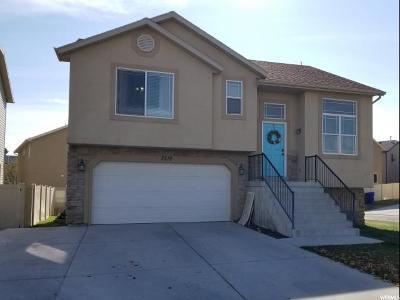 Eagle Mountain Single Family Home For Sale: 7518 N Levi Ln E