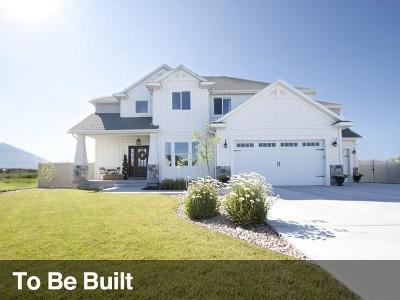 Springville Single Family Home For Sale: 951 S 2500 E