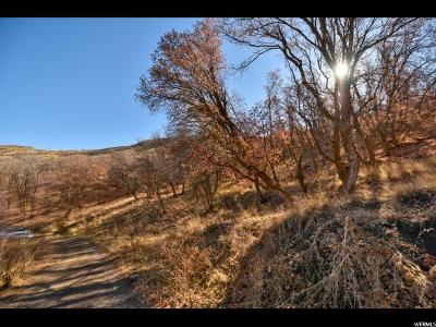 Herriman Residential Lots & Land For Sale: 15729 S Rose Canyon Rd W