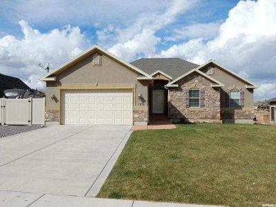 Santaquin Single Family Home For Sale: 1178 E Foothill Dr