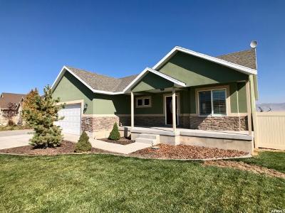 Grantsville Single Family Home For Sale: 419 S Gold Dust E