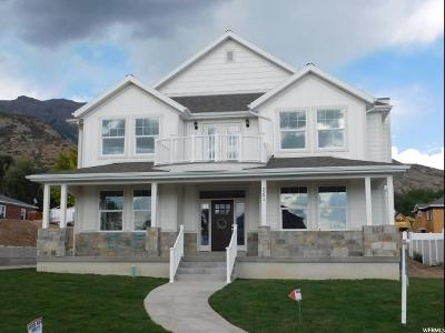 Pleasant Grove Single Family Home For Sale: 251 S 1000 E