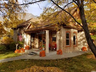 Springville Single Family Home For Sale: 388 N 100 E