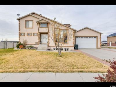 West Valley City Single Family Home For Sale: 6286 W 2900 S