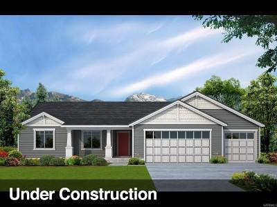 Saratoga Springs Single Family Home For Sale: 568 S Woodstock Ln E #355