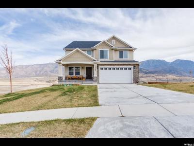 Santaquin Single Family Home For Sale: 1345 E Sageberry Dr.