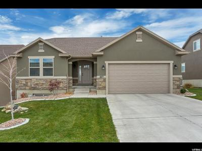 Saratoga Springs Single Family Home For Sale: 1477 S Lake View Terrace Rd