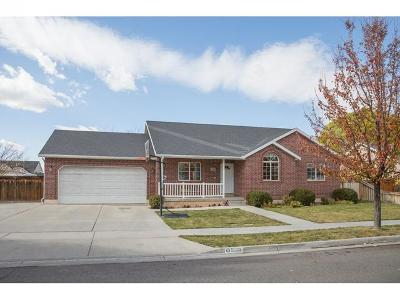Spanish Fork Single Family Home For Sale: 1538 S 1170 E