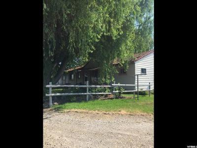American Fork Farm For Sale: 7500 N 7230 W