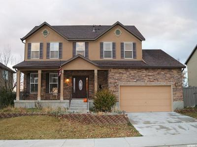 Eagle Mountain Single Family Home For Sale: 8843 N Franklin Dr