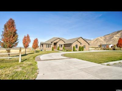 Erda Single Family Home For Sale: 943 E Tanglewood Rd