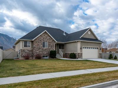 Spanish Fork Single Family Home For Sale: 2308 E 1450 S