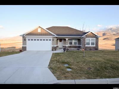 Santaquin Single Family Home For Sale: 1317 Sageberry Dr