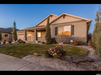 Lehi Single Family Home For Sale: 2898 N Desert Forest Ln