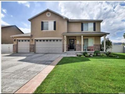 Lehi Single Family Home For Sale: 418 S Water Way Rd