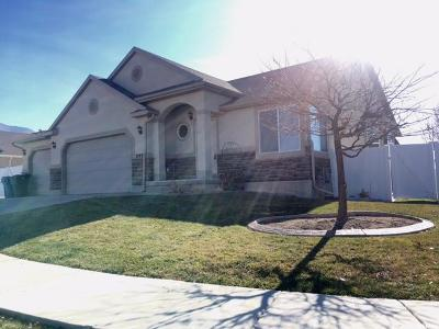 Stansbury Park Single Family Home For Sale: 292 Warley Way