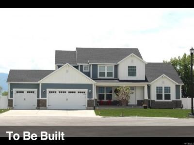 Mapleton Single Family Home For Sale: 1047 N 700 W #17