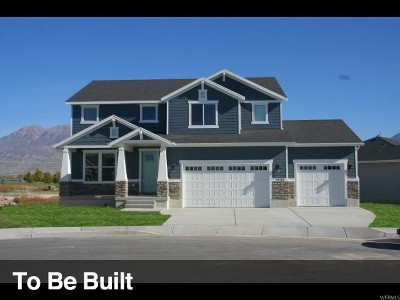 Mapleton Single Family Home For Sale: 824 N 650 W #24