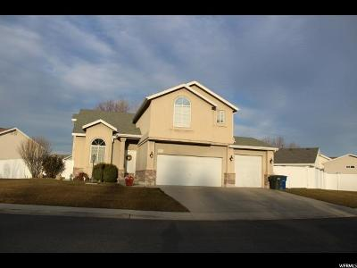 West Valley City Single Family Home For Sale: 3934 W Beth Park Dr S